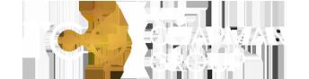 Chapman Group Logo